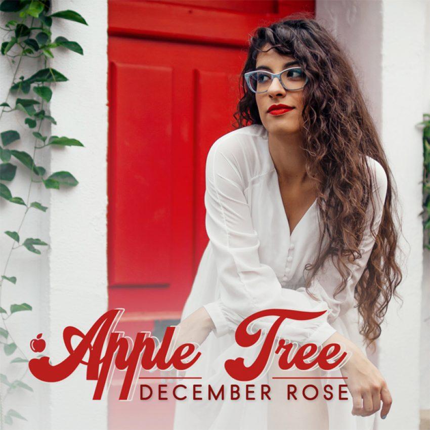 December Rose Apple Tree